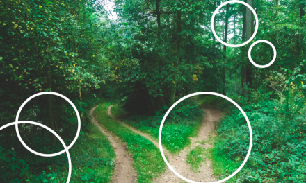 Osien vuosi – miten tutustuin dissosioituneeseenpersoonallisuuteeni?