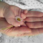 Lapsuuden traumatisoitumisen vaikutus vanhemmuuteen – vertaisryhmä verkossa